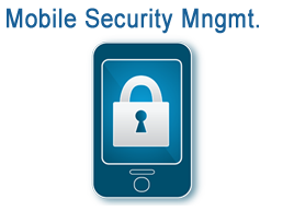 Airwatch Mobile Security Management